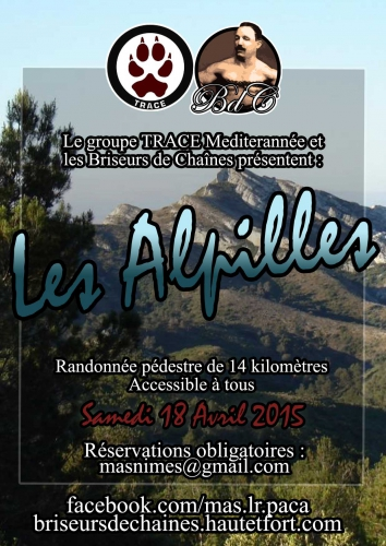 alpilles copie.jpg