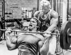 arnold-blueprint-mass-training-4-graphics.jpg