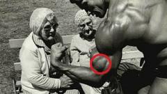 biceps brachial antérieur